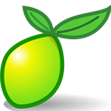 lime survey icon